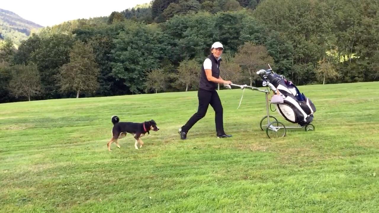 Golf_mit_Hund
